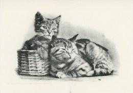 Chats / Chatons Et Leur Panier. Carte Réalisée Par Les Invalides Du Comptoir National De Main D´oeuvre Invalide. - Cats