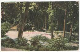 Scene In Bronx Park, New York - 1910 - Bronx