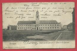 Hemiksen - Depot Van St. Bernard - 1905 ( Verso Zien ) - Hemiksem