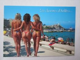 NU FÉMININ  ÉROTIQUE ÉROTISME FEMME NUE CHARME PIN Up Les Charmes D'Antibes - Pin-Ups