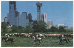 During The GOP Convention In Dallas, August 20-23, 1984 - Dallas