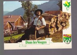 Vosges Touristiques Avec Le Schlitteur - France