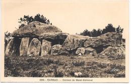 DOLMEN De MANE KERIONED - CARNAC - Dolmen & Menhirs