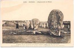 ALIGNEMENTS DU MENEC - CARNAC - Dolmen & Menhirs