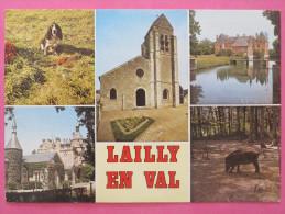 LAILLY EN VAL - Multivues - Non Classificati