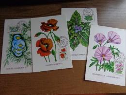 59 Maximumkaarten - Kibris Turk Federe Devleti Postalan  (see Pictures) - Turchia