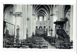 Arendonk - Binnenzicht O.-L.-Vrouwkerk (Hoofdkerk) - Arendonk