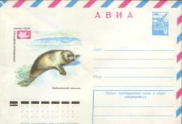 Russia - Postal Stationery Postcard 1978  -Marine Mammals -  Baikal Sea Dog - Mammifères Marins