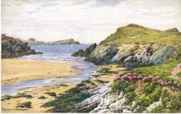 Porth Nr Newquay By A R Quinton Colour Postcard - J Salmon No 2172 - Quinton, AR