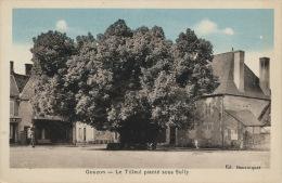 GOUZON - Le Tilleul Planté Sous Sully - France