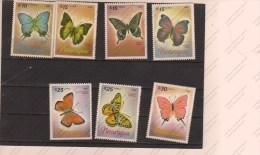NICARAGUA - Schmetterlinge
