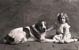Mädchen Mit Hund, Sehr Hübsche Fotokarte Gel.1913, Stempel Szombathely, Rembrandt Gravure Printed In England - Szenen & Landschaften