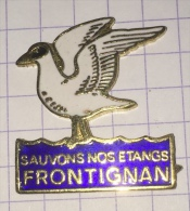 CANARD SAUVONS NOS ETANGS FRONTIGNAN - Animals