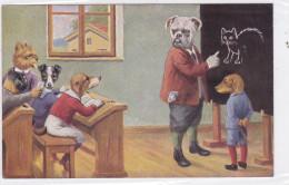 CARD CANE BASSOTTO BASSET SAUGE DOG SCUOLA BULL-DOG   -FP-VDB-2-    0882--23787 - Chiens