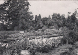 Lokeren, St Benedictusgesticht, Rustig Hoekje In De Tuin, Gestuurd Naar Schrijver Stijn Streuvels  (pk19908) - Lokeren