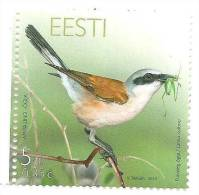Estland / Estonia 2010 MNH Estonia Birds SHRIKE Fauna Nature Bird - Estland