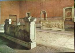 Roma Foro Romano / The Roman Forum - The Plutei Of Trajan / I Plutei Di Traiano - Roma