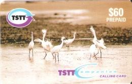 TARJETA DE TRINIDAD Y TOBAGO  DE UNAS GARZAS BLANCAS   (BIRD-PAJARO) - Trinidad & Tobago