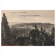 Gruss Aus Dem Schwarzwald  Der Feldberges Hof Vom Herzogenhorn    Philipp Russemer Baden Baden 3973
