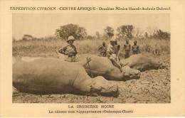 Croisière Noire Citroen Chasse Aux Hippotames Oubangui Chari - Zentralafrik. Republik