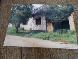 Photo prise � Vukovar(Ex Yougoslavie)