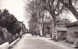 83.LA ROQUEBRUSSANNE. LA RUE DU PORTAIL - La Roquebrussanne