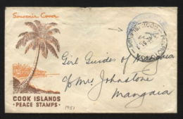 COOK ISLANDS GIRL GUIDES COVER - LOVELY! - Unclassified
