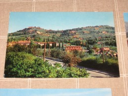 FIESOLE  COLLINA COLORI NV                      Qui Entrate!!! - Firenze