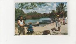 MARTINIQUE - TROIS RIVIERES  PETIT MARCHE EN PLEIN AIR - Martinique