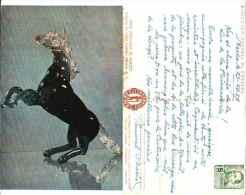 Cheval En Pate De Verre, Art Mexique - Entier Postal Mexico 1957 - Cavalli