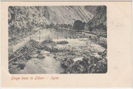 25422g SYRIE - Gorge Dan Le Liban - Syrie
