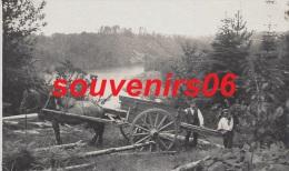 Ducey  - St Hilaire Du Harcoët - Carte Photo Attelage Des Débardeurs De Bois Pour L´implantation , Vallée D´yvrande - Ducey