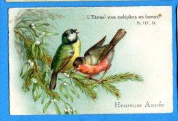 Madd076, Rouge-gorge, Mésange, Heureuse Année, Circulée Sous Enveloppe - Vogels
