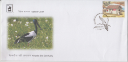 India  2009  Birds   Cranes  KHIJARIA BIRD SANCTUARY  JAMNAGAR  Special Cover # 84977  Inde  Indien - Cranes And Other Gruiformes