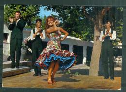 Cpsm Gf -   Espana Tipica Nè Marina Torres, Baile Andaluz, Rumba Catalana   Ac8636 - Dances
