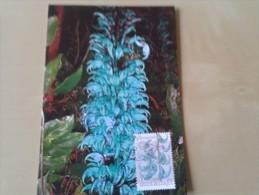 Bijzondere Planten Jaderank Afgestempeld Meise - Postales