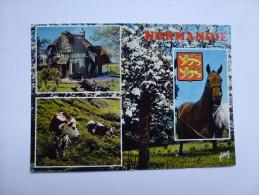 CP , Cheval , Horse , Normandie , Vache , Blason - Pferde