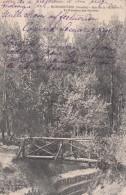 Cp , 85 , NOIRMOUTIER , Bois De La Chaise , Le Ruisseau Des Myrthes - Noirmoutier