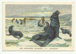 CHROMO PUBLICITAIRE - CHICOREE LERVILLES à BOUCHAIN - LES GRANDES CHASSES - OTARIES - Chromos