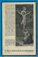 Bidprentje Van Paul Van Cauwenberghe - Wannegem-Lede - Kruishoutem - 1875 - 1934 - Andachtsbilder