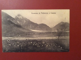 PANORAMA DI TOLMEZZO E CANEVA - EDITORE VITTORIO MOLINARI - TOLMEZZO - Udine