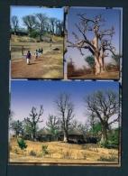 GAMBIA  -  Rural Scenes  Multi View  Unused  Postcard As Scan - Gambia