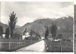 CAMPO LOMASO  PANORAMA..VIAGGIATA .1954-FG.C282 - Trento