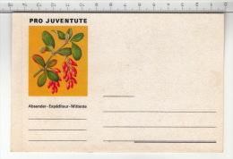 Etiquette Pro Juventute / Etikette Pro Juventute - Autres Collections