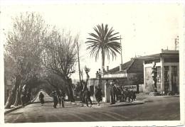 CASTIGLIONE. AVENUE DE LA PLAGE - Algérie
