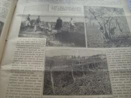 DOMENICA DELL'AGRICOLTORE 1928 BAGOLINO FONDI GONZAGA - Libri, Riviste, Fumetti