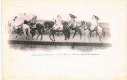 MANOEUVRE DE L EST 1901 ... REVUE DE BETHENY ... LES CAIDS TUNISIENS - Militaria
