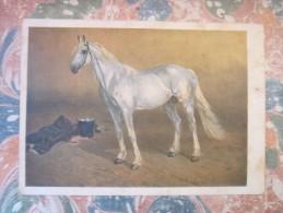 ART RUSSIAN PAINTER SAMOKISH TROTTER HORSE 1932 - Chevaux