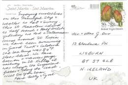 British Virgin Islands 1980 Mango Fruit 50c Viewcard St Maarten - Britse Maagdeneilanden