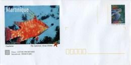 """PAP De 2007 Avec Timbre """"La Tortue Luth"""" Et Illust.""""Capitaine - Martinique"""" Avec Carte De Correspondance - Postwaardestukken"""